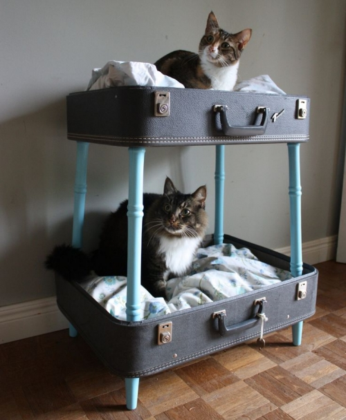 cat bed diy