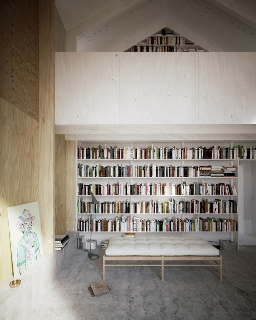knygų laikymo idėjos namuose