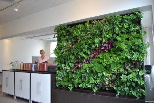 ecologic green wall