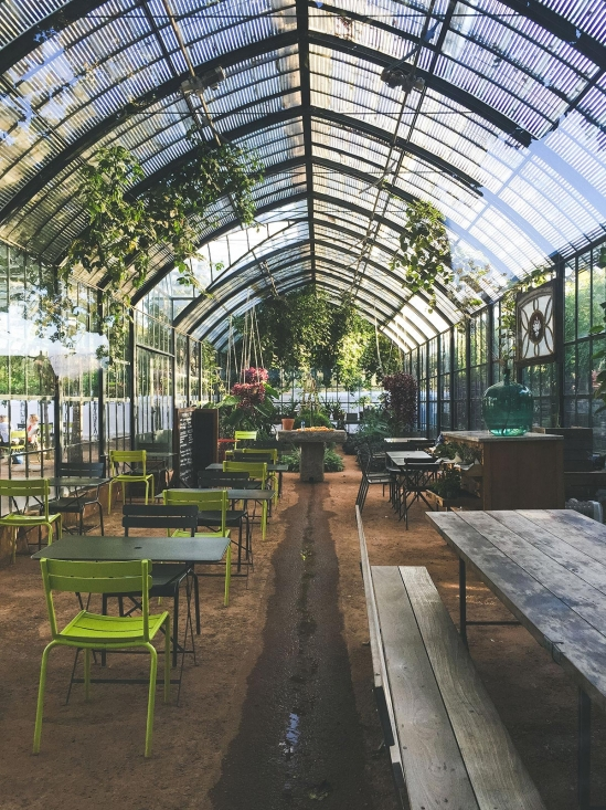 cafe in a greenhouse