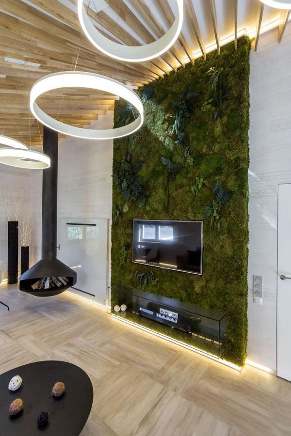 zalia siena aplink televizoriu