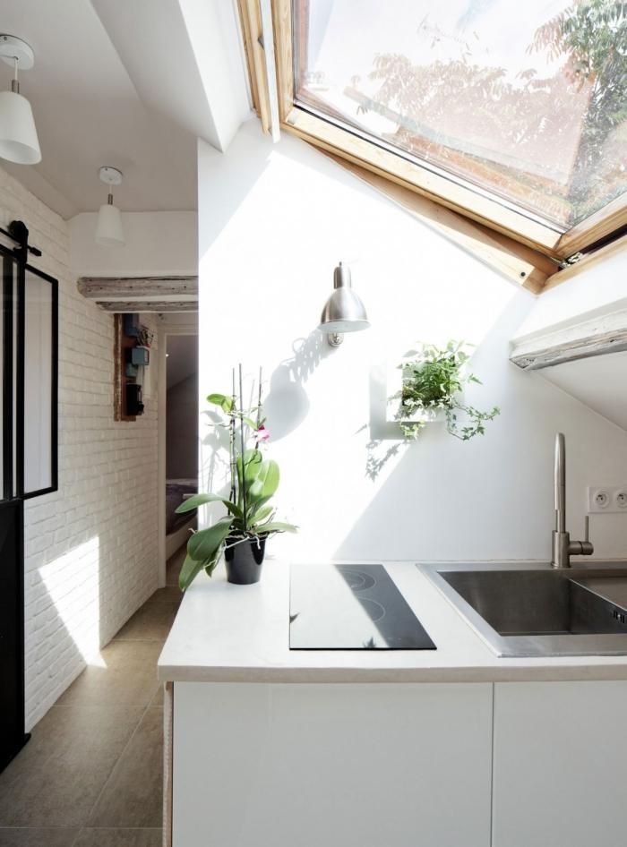 virtuve po slaitiniu stogu