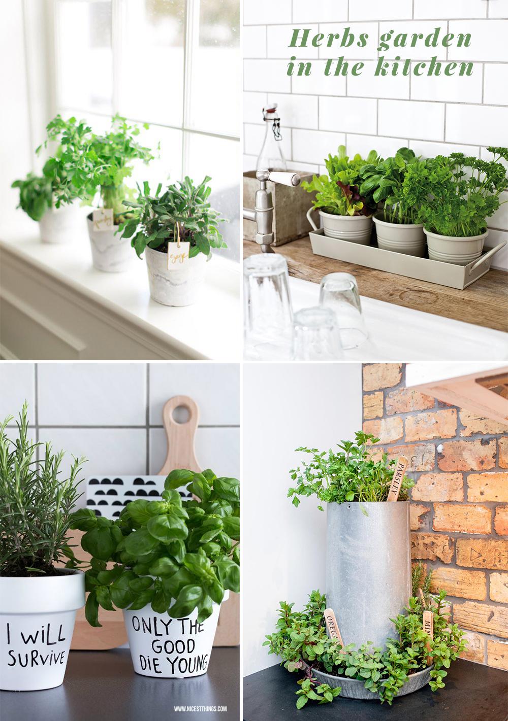 Herbs garden in the kitchen - Viskas apie interjerą